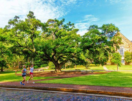 Cloverdale Park