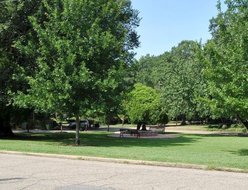 College Street Park